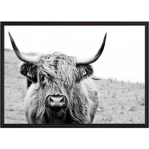 Постер в рамке Дом Корлеоне Шотландская корова 50x70 см cw 7937 xd фигура корова сонька sealmark