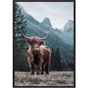 Постер в рамке Дом Корлеоне Шотландский бык 50x70 см постер в рамке дом корлеоне белые перья 50x70 см