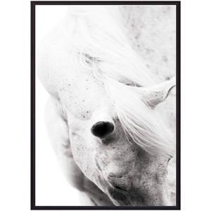 Постер в рамке Дом Корлеоне Белая лошадь 07-0281-50х70 цена