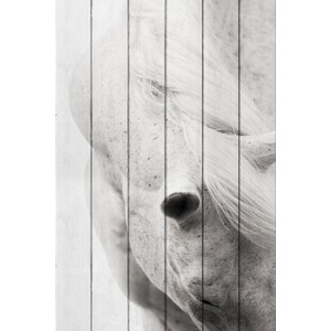 Картина на дереве Дом Корлеоне Белая лошадь 01-0434-120х180