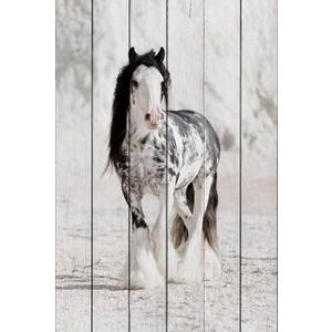 Картина на дереве Дом Корлеоне Ирландская лошадь 01-0404-30х40