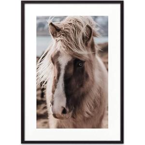 Постер в рамке Дом Корлеоне Скандинавская лошадь 07-0296-30х40 фото