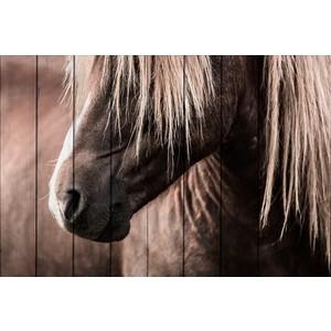 Картина на дереве Дом Корлеоне Скандинавская лошадь 01-0349-30х40 фото