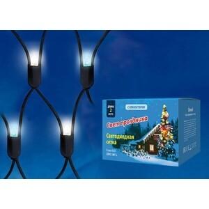 Уличная светодиодная гирлянда Uniel ULD-N2015-288/SBK White-Blue IP67