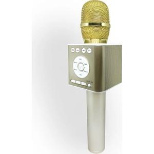 Караоке-микрофон Funtastique FM01G золотой