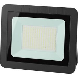 Прожектор светодиодный ЭРА LPR-150-6500K SMD Eco Slim