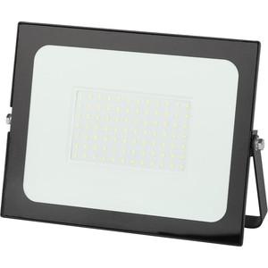 Прожектор ЭРА LPR-021-0-65K-100