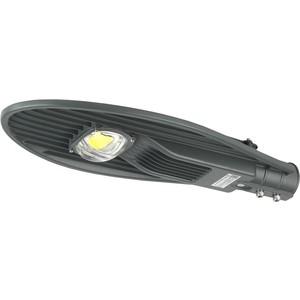 Уличный светодиодный светильник консольный ЭРА SPP-5-60-5K-W уличный светодиодный светильник консольный эра spp 5 80 5k w
