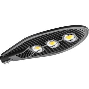 Уличный светодиодный светильник консольный ЭРА SPP-5-150-5K-W