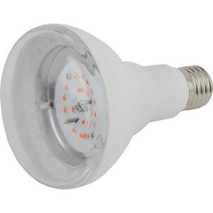 Лампа светодиодная ЭРА FITO-16W-RB-E27-K