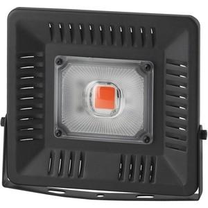 Прожектор светодиодный ЭРА FITO-50W-LED