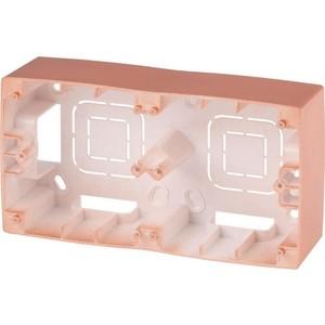 Коробка для накладного монтажа 2-постовая ЭРА 12-6102-14