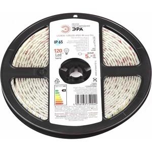 Светодиодная влагозащищенная лента ЭРА LS2835-120LED-IP65-W-eco-5m