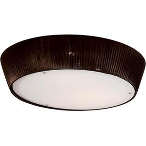 Потолочный светильник Citilux CL913142