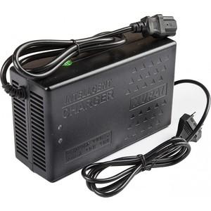 Зарядное устройство Rutrike для свинцовых тяговых аккумуляторов 60V20A/H (2,8A) фото