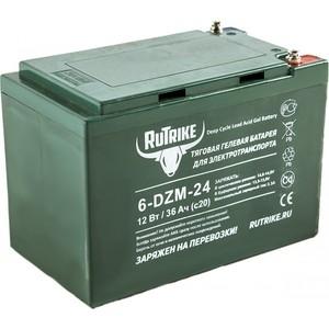 Аккумулятор Rutrike Тяговый гелевый 6-DZM-24 (12V24A/H C2)