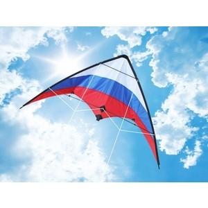 Управляемый воздушный змей скоростной Hasi Россия 160 управляемый воздушный змей orao воздушный змей feel r 160