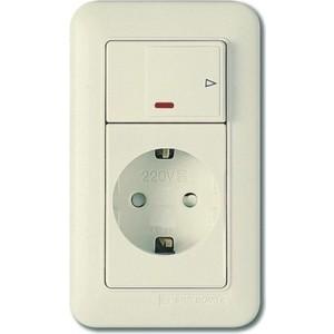 цена на PANASONIC SHIN DONG-A Розетка з/к с выключателем (подсветка). Бежевый
