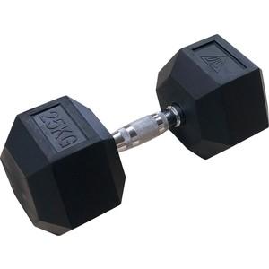 цены Гантели DFC 25кг (пара) DB001-25