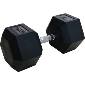 Гантели DFC 50кг (пара) DB001-50