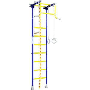 Детский спортивный комплекс Romana R2 (01.20.7.06.490.02.00-11) синяя слива