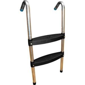 Лестница для батута DFC 8 футов (две ступеньки)