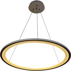 Светильник Stilfort Подвесной светодиодный Hoop 2087/91/01C