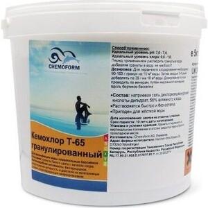Кемохлор Chemoform 0501005 Т-65 гранулированный 5 кг