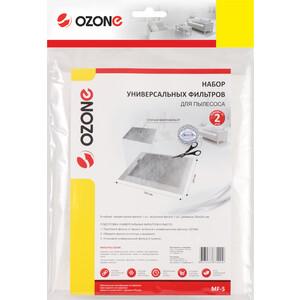 Фильтр для пылесоса Ozone в наборе, микро 250X200 мм (MF-5)