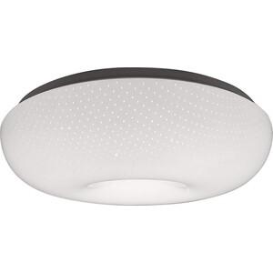 цена на Светильник Feron Потолочный светодиодный AL749 41245