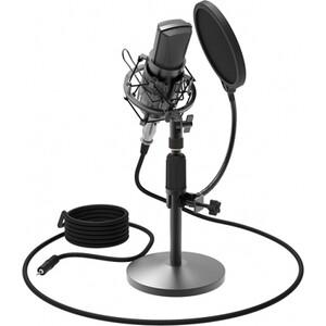 Фото - Микрофон Ritmix RDM-175 black микрофон bbk cm114 black