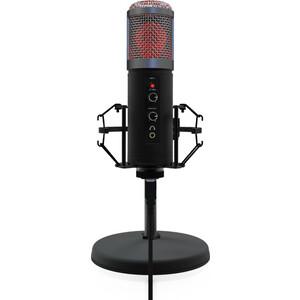 Микрофон Ritmix RDM-260 USB Eloquence Black