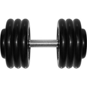 Гантель профессиональная MB Barbell Профи черная 33.5 кг