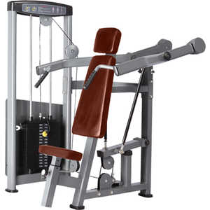 Жим от плеч Bronze Gym D-003 голень машина bronze gym d 017