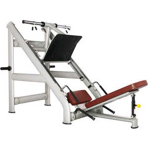 Жим ногами под углом 45 градусов Bronze Gym H-022 голень машина bronze gym d 017
