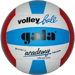 цена на Мяч волейбольный Gala Academy (BV5181S), размер 5, цвет бело-сине-красный