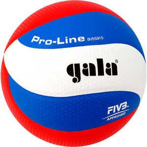 Мяч волейбольный Gala Pro-Line 10 FIVB (BV5591S), размер 5, цвет бело-голубо-красный купить недорого низкая цена  - купить со скидкой