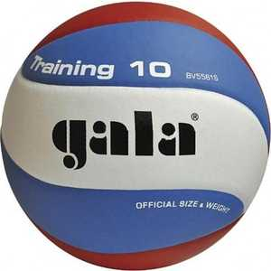 Мяч волейбольный Gala Training 10 (BV5561S), размер 5, цвет бело-голубо-красный