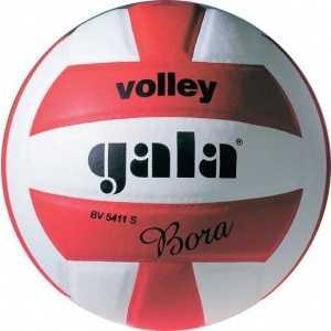 Мяч волейбольный Gala Bora 10, арт. BV5671S, р. 5, бело-красный