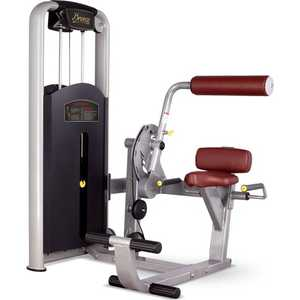 Разгибание спины Bronze Gym MV-009 C
