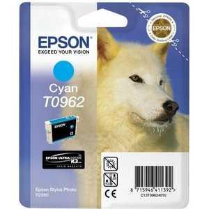 Картридж Epson R2880 (C13T09624010) цена и фото