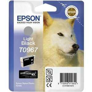 Картридж Epson R2880 (C13T09674010) цена и фото