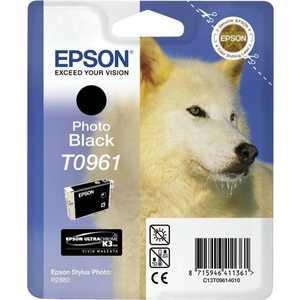 Картридж Epson R2880 (C13T09614010)