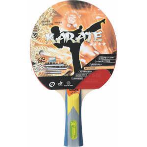 Ракетка для настольного тенниса Giant Dragon Karate ST12401