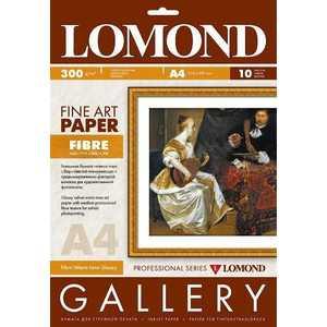 Бумага Lomond Художественная бумага 937041 фото