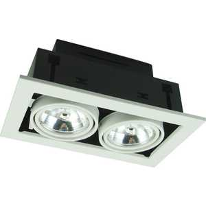 Точечный поворотный светильник Artelamp A5930PL-2WH