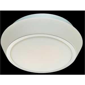 Потолочный светильник ST-Luce SL496.502.02