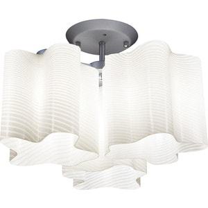 Потолочный светильник Lightstar 802031