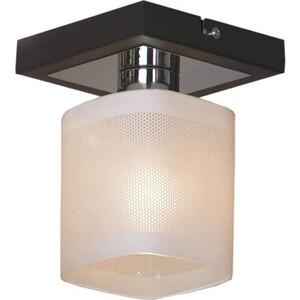 Потолочный светильник Lussole LSL-9007-01 цена