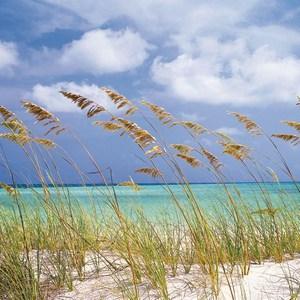 Фотообои Komar Ocean Breeze 368 х 254см. (8-515)